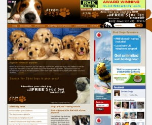 DreamDogs.co.uk